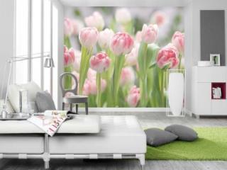Продажа квартир: 2-комнатная квартира, Абакан, ул. Кати Перекрещенко, 2, фото 1