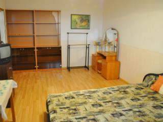 Снять 1 комнатную квартиру по адресу: Великий Новгород г пр-кт Александра Корсунова 57