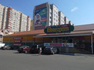 Продажа квартир: 1-комнатная квартира, Воронеж, ул. Федора Тютчева, 95л, фото 1