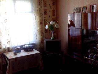 Продажа квартир: 1-комнатная квартира, Новосибирская область, Искитимский р-н, ст. Евсино, ул. Мира, фото 1