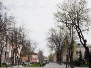 Купить 3 комнатную квартиру по адресу: Псков г пр-кт Октябрьский 14